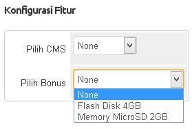 hosting bonus flashdisk